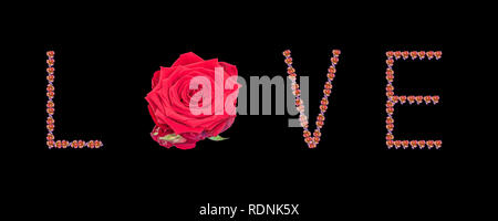 Fine art still life color image of the word love constructed from floral/flower letter made of rose blossom macros on black background - Stock Photo