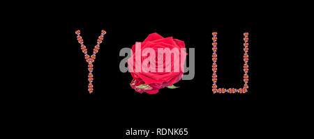 Fine art still life color image of the word love constructed from floral/flower characters/letter made of rose blossom macros on black background - Stock Photo