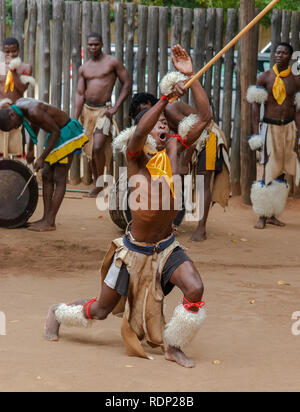 Traditional Swazi dancing  display by the troupe at Mantenga Cultural Village, Ezulwini Valley, eSwatini formerly known as Swaziland - Stock Photo