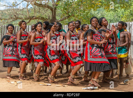 Traditional Swazi dancing  display by the troupe at the Mantenga Cultural Village, Ezulwini Valley, eSwatini formerly known as Swaziland - Stock Photo