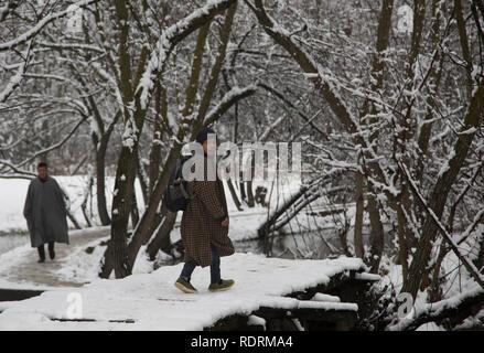 Srinagar, Indian-controlled Kashmir. 19th Jan, 2019. A boy walks on a snow-covered footbridge after fresh snowfall in Srinagar city, the summer capital of Indian-controlled Kashmir, Jan. 19, 2019. Credit: Javed Dar/Xinhua/Alamy Live News - Stock Photo