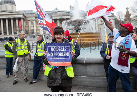 London, UK. 19 January 2019. Woman Yellow Vest protestor holds placard prior to start of march while bystander tries to catch flag. Graeme Barbour/Ala - Stock Photo