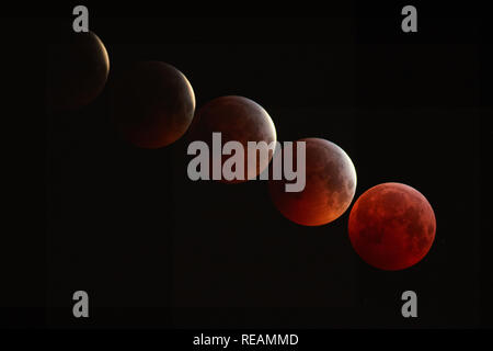 London, UK. 21st January, 2019. Lunar Eclipse, taken from Bexley, South East London. This is a five image stacked composite of images taken between 4.30am and approximately 5.12am on the 21st January 2019. Showing the full eclipse on the final image.  Credit: Steve Hickey/Alamy Live Newsmoon dark sky Credit: Steve Hickey/Alamy Live News - Stock Photo