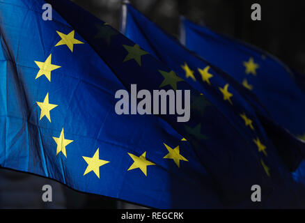 London, UK. 22nd Jan, 2019. Photo taken on Jan. 22, 2019 shows the EU flags outside the Houses of Parliament in London, Britain. British Prime Minister Theresa May said on Monday that she would not back a no-deal Brexit or delay the country's departure from the European Union (EU). May made the remarks while addressing lawmakers in the House of Commons to outline her latest proposals for Britain's departure from EU. Credit: Han Yan/Xinhua/Alamy Live News - Stock Photo