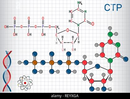 Cytidine triphosphate (CTP) molecule, it is pyrimidine nucleoside molecule. Structural chemical formula and molecule model. Sheet of paper in a cage.  - Stock Photo