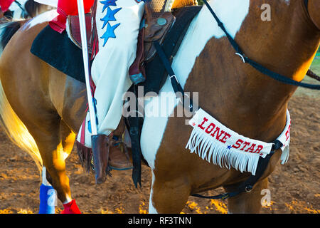 Rodeo cowgirls horse - Stock Photo