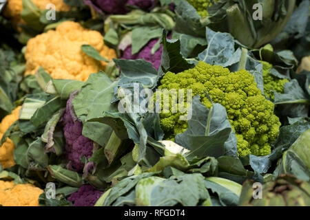 Fractal chartreuse cauliflower and a broccoli hybrid aka Romanesco at market in Pacific Northwest - Stock Photo