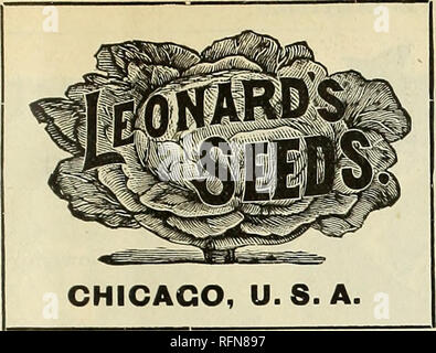 . Leonard's illustrated catalogue : 1897. Nursery stock Illinois Chicago Catalogs; Flowers Seeds Catalogs; Vegetables Seeds Catalogs; Grasses Seeds Catalogs; Agricultural implements Catalogs. ^^^^ ^ ^ Mi ^ ^ ^ ME take pleasure in handing you herewith our Catalogue for 1897. The varieties listed are those that will give satisfactory results. The illustrations and descriptions are as near right as they can be made. Our prices will be found low. In regard to the quality of our supplies, our best argument is the constantly increasing demand for LEONARD'S SEEDS. Our aim has been to establish a seed - Stock Photo