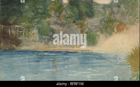 Blue Spring, Florida by Winslow Homer.jpg - RFRF1M - Stock Photo