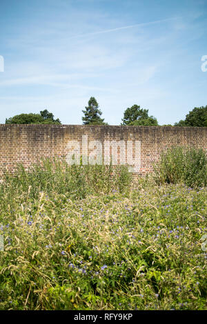 Outside the Tudor Walled Garden at the Bishop's Palace in Fulham, London - Stock Photo