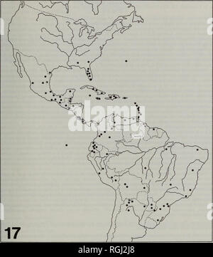 . Bulletin of the British Museum (Natural History) Entomology. OPHIONINAE OF TROPICAL MESOAMERICA 193. Map 17 Localities at which Enicospilus trilineatus has been collected. Bonito, Ceara, Espiritu Santo, Mato Grosso, Minas Gerais, Para, Parana, Rio Grande do Sul, Rio de Janeiro, Santa Catarina, Sao Paulo); Colombia (Arauca, Caqueta, Cundinamarca, Meta, Valle); Costa Rica (Alajuela, Cartago, Guanacaste, Puntarenas, San Jose) Cuba; Dominica; Dominican Republic; Ecuador (Esmeraldas, Galapagos Is., Napo, Pastaza, Pichincha); El Salvador; Guadeloupe; Guatemala; Grand Cayman; Grenada; Guyana; Haiti - Stock Photo