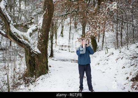 Little Druim Wood Glen Finglas Woodland Trust reserve Loch Lomand and the Trossacks national park Scotland - Stock Photo
