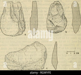 . Bulletin. Ethnology. 304 BUREAU OF AMERICAN ETHNOLOGY [BulL 177. Figure 120.—Stone choppers from habitation sites of the Rupununi Phase. Manos.—Five pebbles, 4 of quartzite and 1 of quartz, have one surface worn from grinding. All appear to have been circular or slightly ovoid, 8.0 to 9.5 cm. in maximum diameter and 3.1 to 4.5 cm. thick. Tliree have wear on only one face, the other two on both. Metates.—Fragments of 3 metates, one each of syenite, granite, and quartzite, are identified by a slightly concave, worn surface on one side. They are broken from larger slabs 3.5 to 4.7 cm. thick. On - Stock Photo