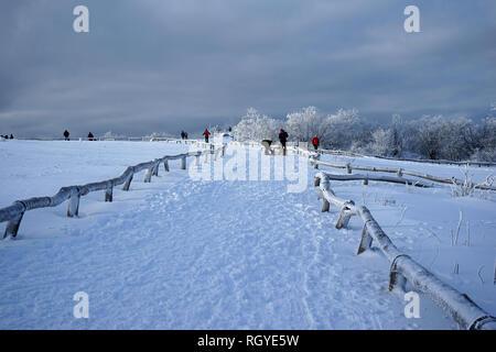Winterlandschaft, Großer Feldberg, Hochtaunus, Taunus, Hessen, Deutschland - Stock Photo