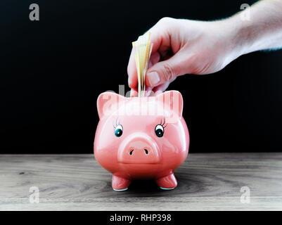 hand putting money in piggy bank - Stock Photo