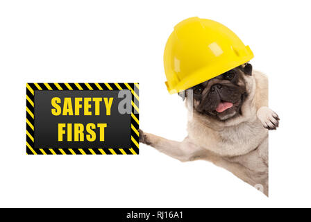 frolic smiling pug puppy dog with yellow constructor helmet, holding up black and yellow safety first sign board, isolated on white background - Stock Photo