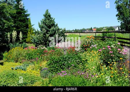 Bunte Sommerblumen diverser Sorten bl?hen im Bauerngarten, - Stock Photo