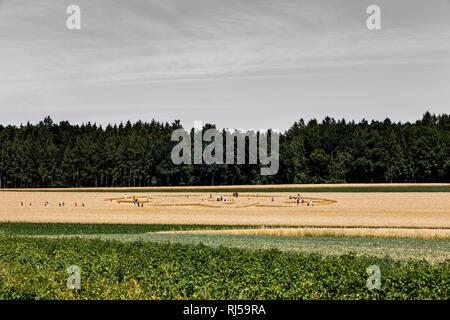 Kornkreis Alling 2015 - Stock Photo