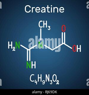 Creatine molecule. Structural chemical formula and molecule model on the dark blue background,. Vector illustration - Stock Photo