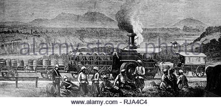Engraving depicting a traction engine drawing a train on the Grand Trunk Road, Lawrence-pore, India. Dated 19th century - Stock Photo