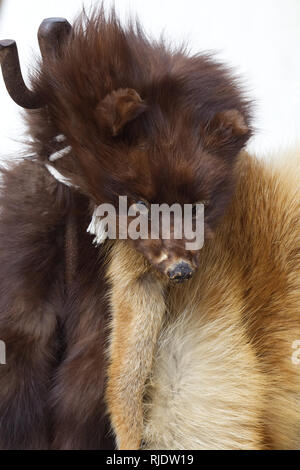 Animal pelts hanging on a market stall - Stock Photo