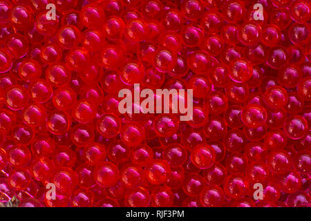 Water red gel balls with bokeh. Polymer gel. Silica gel. Balls of red hydrogel. Crystal liquid ball with reflection. Red texture background. Macro - Stock Photo