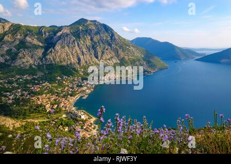 Risan, Bay of Kotor, Province of Kotor, Montenegro - Stock Photo