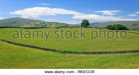 Wensleydale countryside North Yorkshire England. - Stock Photo