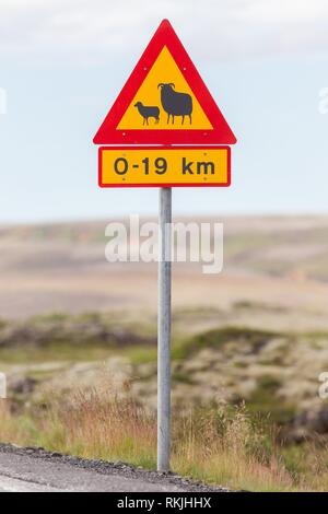 Real Sheep Crossing traffic sign in Iceland. - Stock Photo