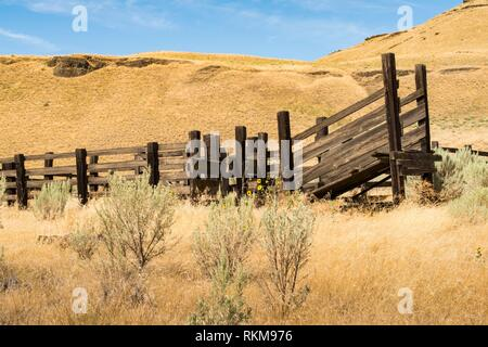 Cattle chute near state route 261, near the Palouse and Snake rivers, Washington state, USA. - Stock Photo