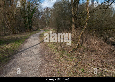 Footpath through Winnall Moors Nature Reserve Hampshire and Isle of Wight Wildlife Trust Reserve Winchester Hampshire England UK March 2016 - Stock Photo