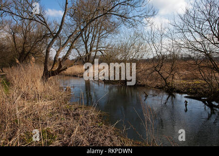Water channel and footpath Winnall Moors Nature Reserve Hampshire and Isle of Wight Wildlife Trust Reserve Winchester Hampshire England UK March 2016 - Stock Photo
