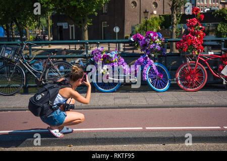 Amsterdam, geschmückte Fahrräder - Amsterdam, Decorated Bicycles - Stock Photo