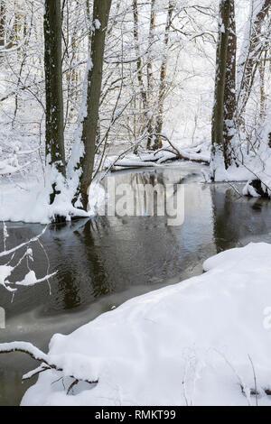 Bach im Winter, Schnee, Winterlandschaft, verschneite Äste, Winterstimmung, winterlich, eisig, Eis, kalt, Steinau, Tieflandbach, Schleswig-Holstein, D - Stock Photo