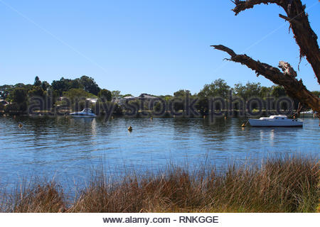 Residential homes at Canning river in Perth, Western Australia - Stock Photo