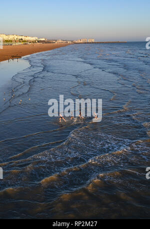Brighton, UK. 20th Feb, 2019. Swimmers enjoy a cold dip in the sea at sunset on Brighton beach as sunny weather is forecast to continue in the south over the next few days Credit: Simon Dack/Alamy Live News - Stock Photo