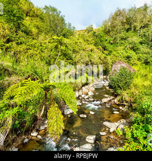 River in Banaue Rice Terraces - Luzon island, Philippines - Stock Photo