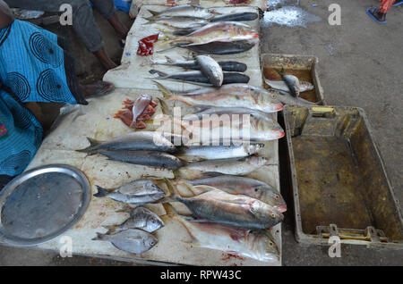 Fish for sale in the stalls of Mbour fish market, Senegal - Stock Photo