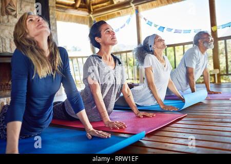 Serene group practicing upward facing dog pose in hut during yoga retreat - Stock Photo