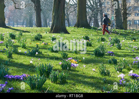 Clissold Park, Stoke Newington, North London, UK. 27th Feb 2019. On the morning of 27th February 2019, with snowdrops springing up in the grass and passers by, during the very warm weather of late February 2019 Credit: Richard Barnes/Alamy Live News - Stock Photo
