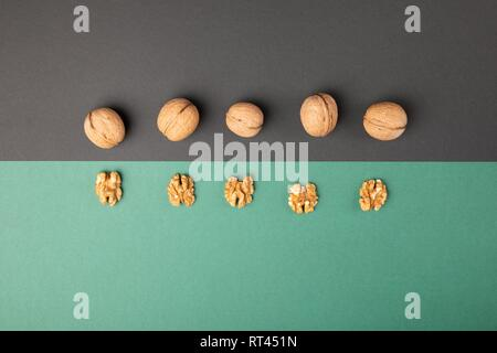 Walnuts out of shells on a light green and grey background - Stock Photo