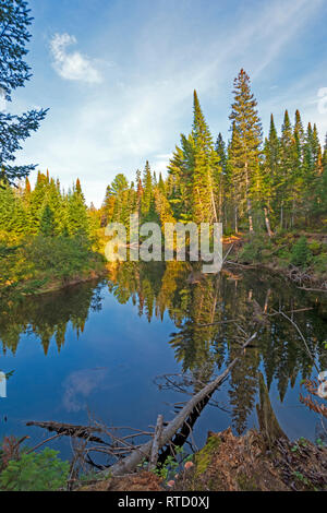 Calm Reflections in a Forest Stream in Algonquin Provincial Park in Ontario - Stock Photo