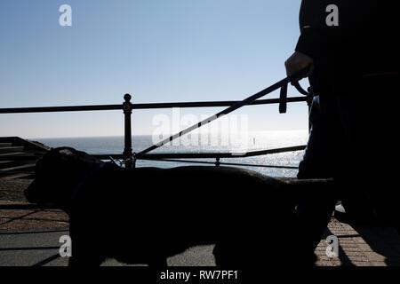 Walking the dog along Ventnor seafront promenade in silhouette, Ventnor, Isle of Wight, England, Britain, United Kingdom, UK. - Stock Photo