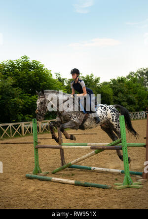 Super slow motion of a woman jockey jumps over the barriers on a horse. - Stock Photo