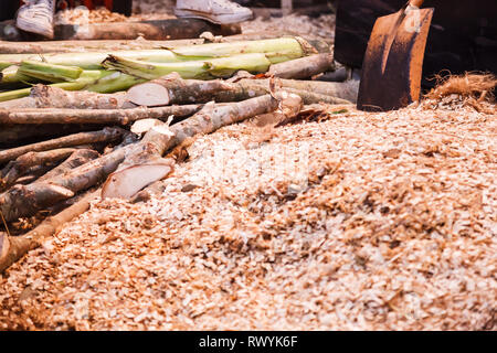 Ground Shredded Chipped Wood chips used as biomass solid fuel, raw material for producing wood pulp, organic mulch in gardening, landscaping and subst - Stock Photo