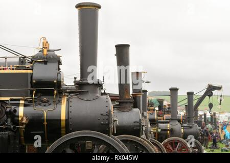Close up of a row of traction engines at a steam fair - Stock Photo
