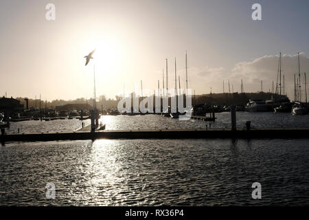 Yarmouth Harbour on the Isle of Wight, looking west as the sun is setting, glowing orange in the sky as a single seagull takes flight. - Stock Photo