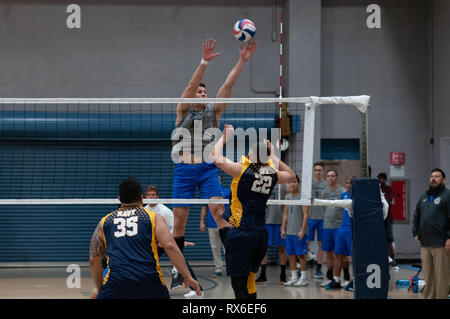 Fort Bragg, North Carolina, USA. 8th Mar, 2019. March 8, 2019 - Fort Bragg, N.C., USA - All-Air Force Men's Volleyball 1st Lt. Seth Miller (17) blocks a shot during the final match between the U.S. Air Force and U.S. Navy at the 2019 Armed Forces Men's Volleyball Championship at Ritz-Epps Gym on Fort Bragg. Air Force defeated Navy, 3-2, winning gold in the three-day round-robin tournament. The Armed Forces Men's and Women's Volleyball Championships are held annually. Credit: Timothy L. Hale/ZUMA Wire/Alamy Live News - Stock Photo