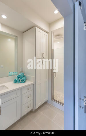Updated Bathroom interior - Stock Photo