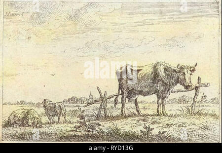 Pasture with cows and sheep, print maker: Johannes Janson, 1761 - 1784 - Stock Photo